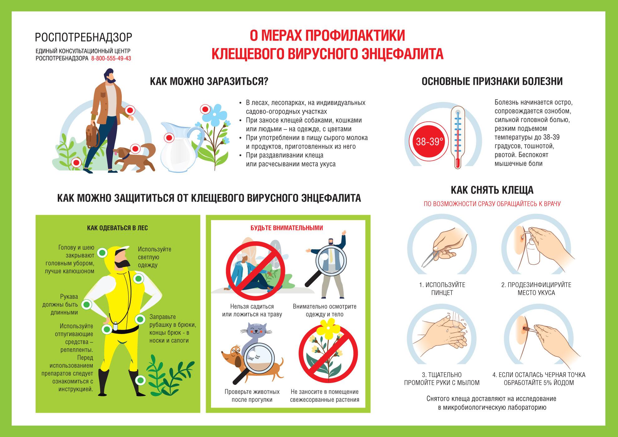 https://www.rospotrebnadzor.ru/files/news/A4-Entsifalit_1980x1400px.jpg