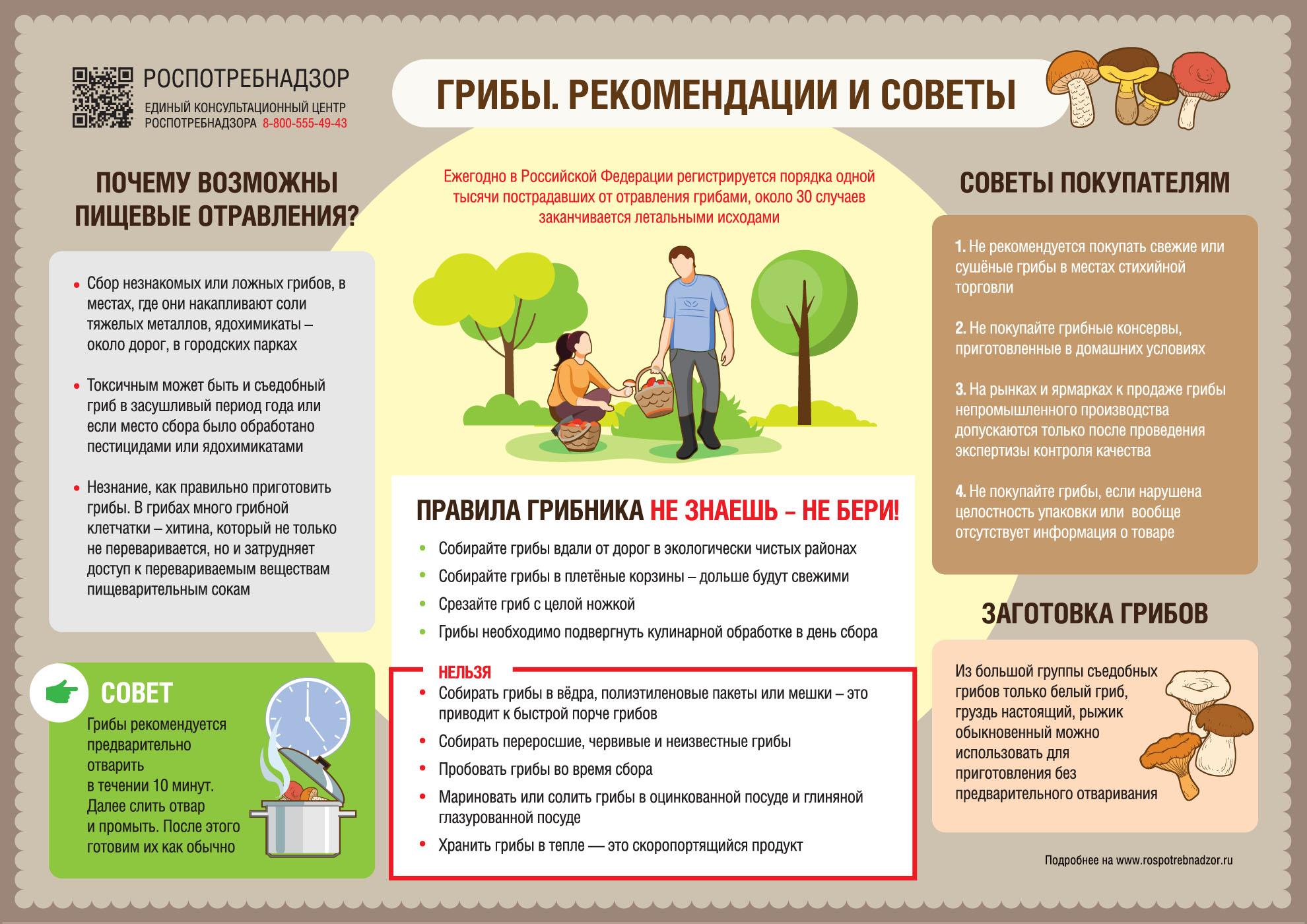 О рекомендациях как выбирать и готовить грибы